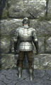 Full plate armor back.jpg