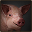 Pig stable.png