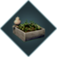 Herbal garden.png