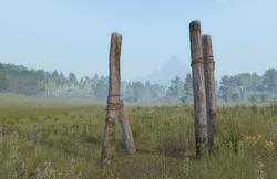 Wooden pilar ingame.png