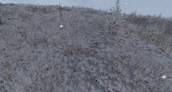 Gras soil winter.png