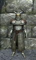 Royal chainmail armor front.jpg