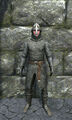 Regular chainmail armor front.jpg