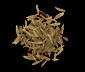 Sugar Carrot Seeds.png
