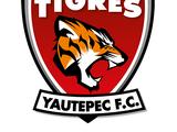Tigres Yautepec