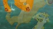 Follow-That-Hippo! (174)
