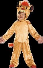 Tlg-costumev1.png