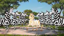 The-golden-zebra (166).png
