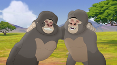 The-lost-gorillas (110).png