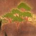 Acaciawoods-profile.png