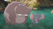 Follow-That-Hippo! (204)