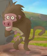 Baboon-2