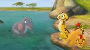 Follow-That-Hippo! (198)