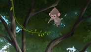Baboons (211)