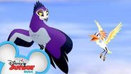 Height and Sight Music Video The Lion Guard Disney Junior