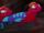 Rainbow Agamas