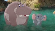Follow-That-Hippo! (206)