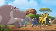 Follow-That-Hippo! (216)