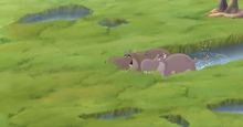 Beshte-and-the-Hippo-Lanes (9).png