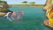 Follow-That-Hippo! (189)