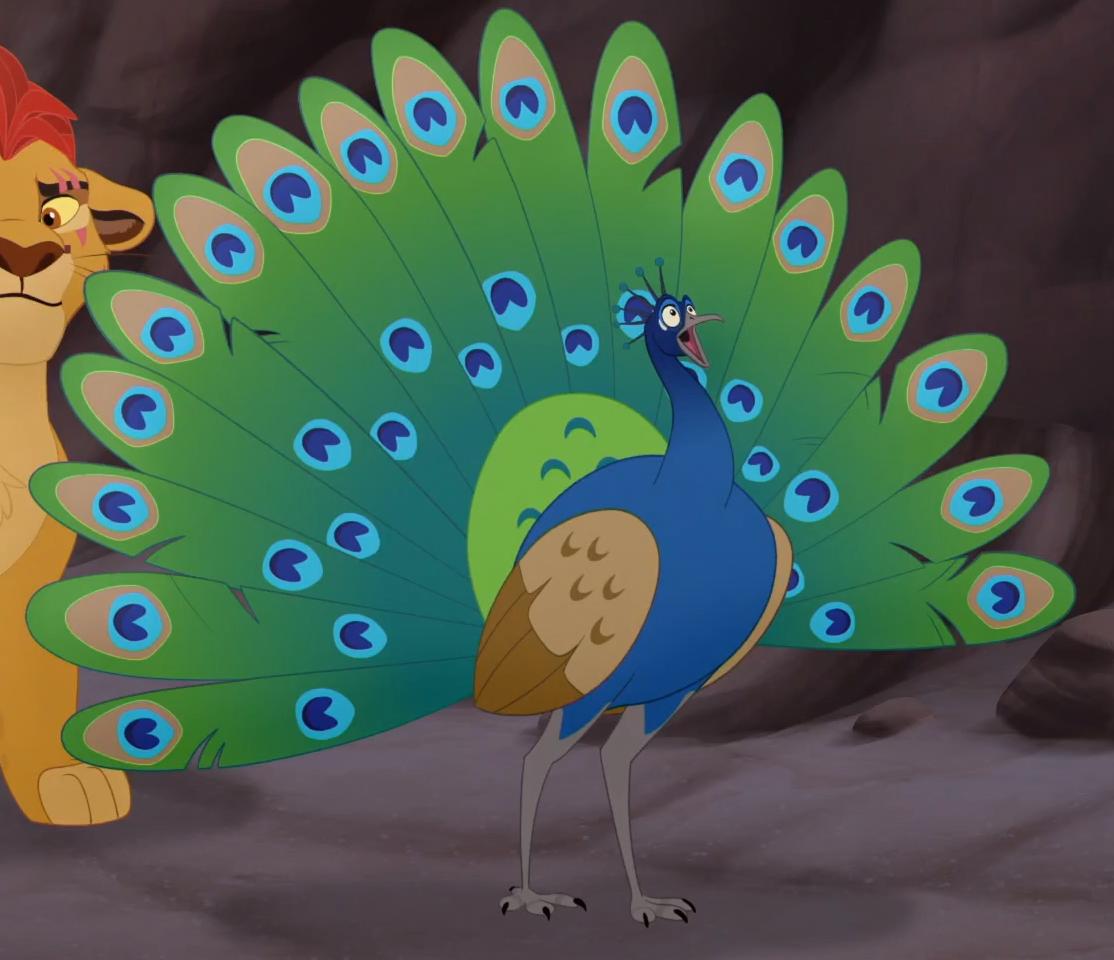 Peacock Leader