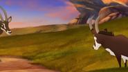 TLG-Battle-for the-Pride Lands (436)