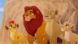 The Lion Guard (African Lion)