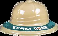 Teamroar-hat