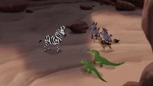 The-zebra-mastermind (490).png