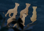 Simba's Pride 01