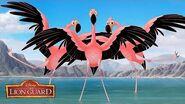 Flamingo Dance Party Music Video The Lion Guard Disney Junior