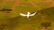 TLG-Battle-for the-Pride Lands (557)