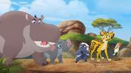 Follow-That-Hippo! (215)