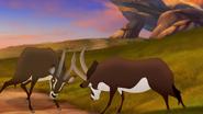 TLG-Battle-for the-Pride Lands (437)