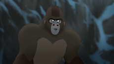 The-lost-gorillas (466).png