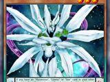 Star Pendulum Magician