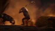 Lionking2019-animationscreencaps.com-11875