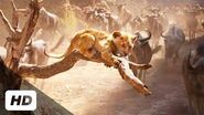 The Lion King (2019) - Stampede Scene (Requested) Super Scenes BluRay HD