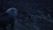 Lionking2019-animationscreencaps.com-12555