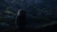 Lionking2019-animationscreencaps.com-9915