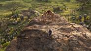Lionking2019-animationscreencaps.com-12753
