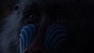 Lionking2019-animationscreencaps.com-1105