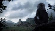 Lionking2019-animationscreencaps.com-5940