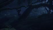 Lionking2019-animationscreencaps.com-9944