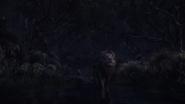 Lionking2019-animationscreencaps.com-10403