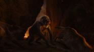 Lionking2019-animationscreencaps.com-11865
