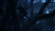 Lionking2019-animationscreencaps.com-10105