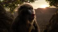Lionking2019-animationscreencaps.com-8777