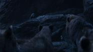 Lionking2019-animationscreencaps.com-12546