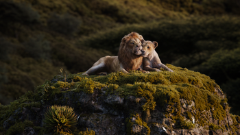 Lionking2019-animationscreencaps.com-9579.png